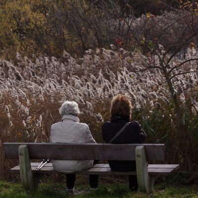 women-on-bench